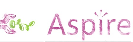 Microsoft Aspire 1