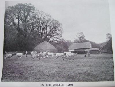 12. college farm