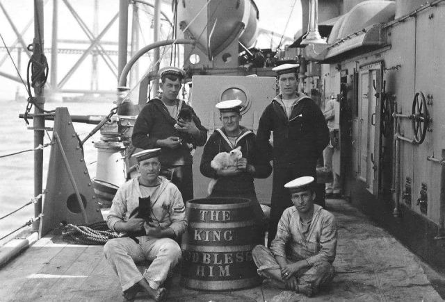 Great-grandad with a ship cat (middle)